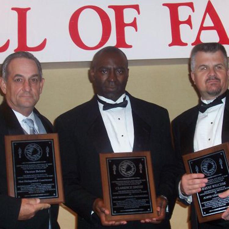 Karate Hall of Fame Award